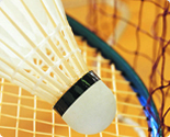 Badminton & Tennis